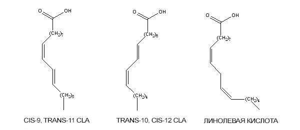 формула CLA
