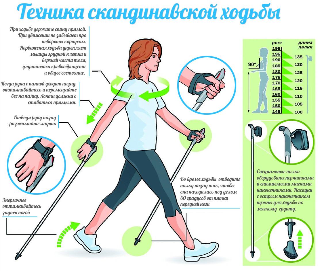 основные правила ходьбы